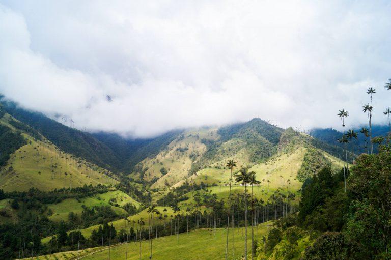 Colombia valle de cocora