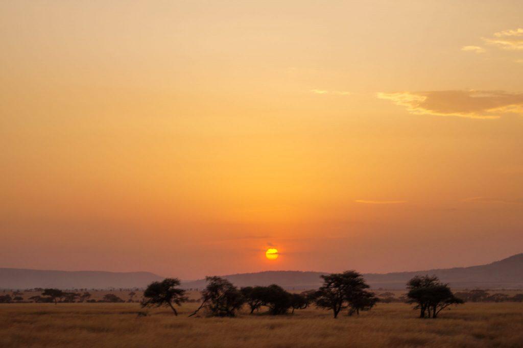 zonsopkomst serengeti