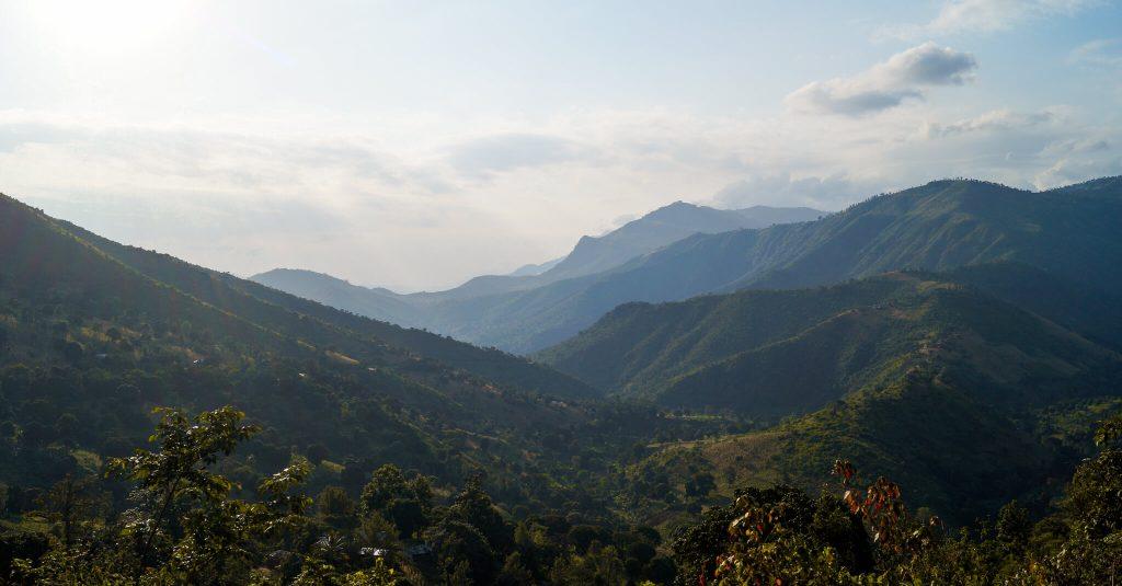 bergen Tanzania