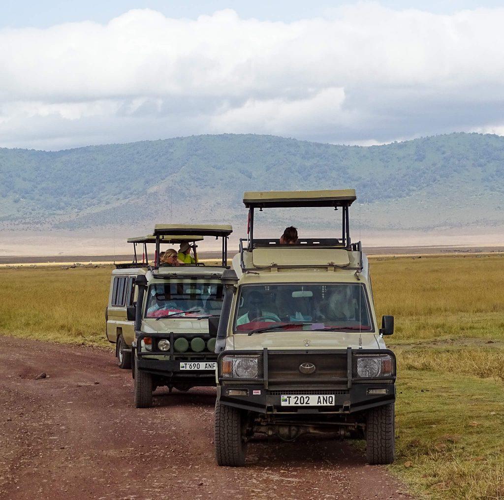 jeepsafari ngorongoro