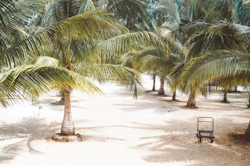 stranden zanzibar