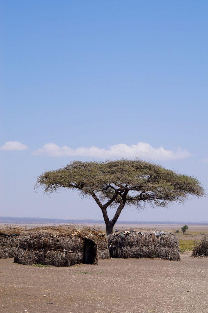 woongebied Masai