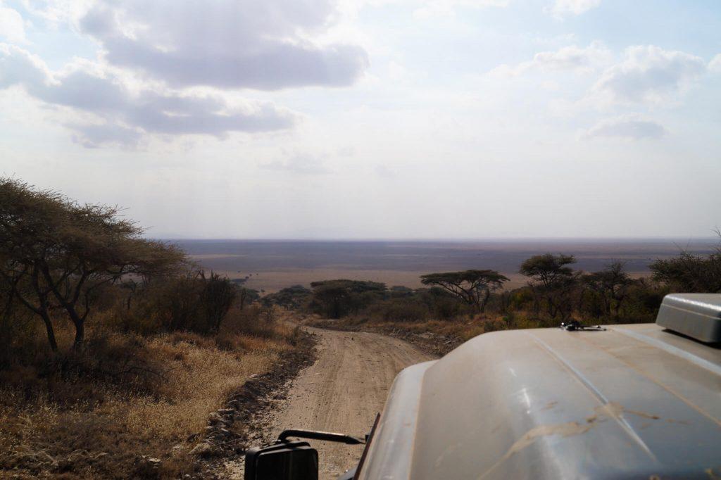 wegen serengeti