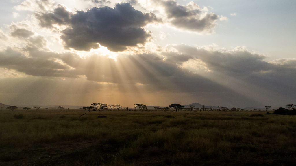 Serengeti reistips