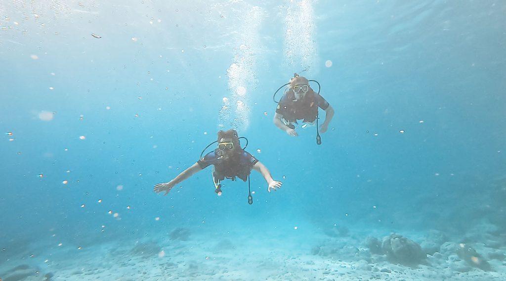 Proefduik ocean encounters