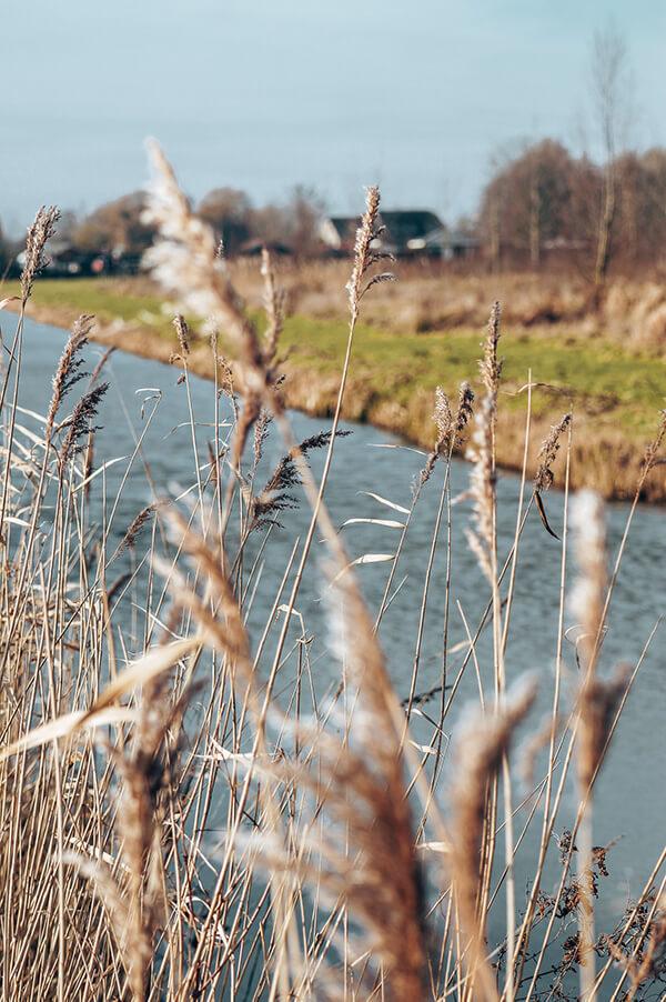 Waalbos Ridderkerk